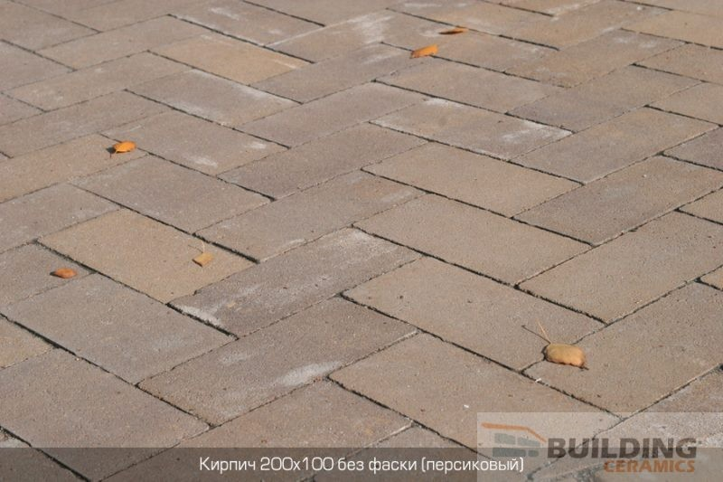 тротуарная плитка золотой мандарин кирпич без фаски